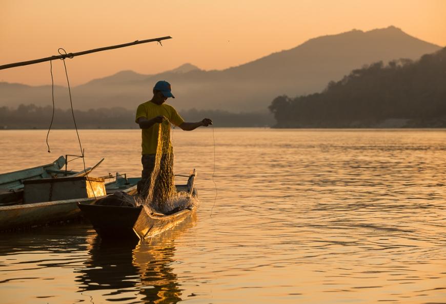 Man reeling in fishing net on Mekong River, Luang Prabang, Laos, Indochina, Asia