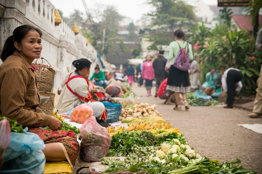 Groceries at Morning Market, Luang Prabang, Laos, Indochina, Asia