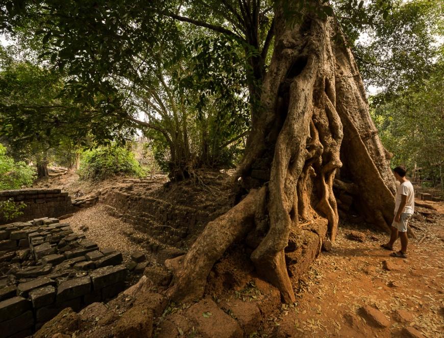Angkor Thom, Angkor, Siem Reap, Cambodia