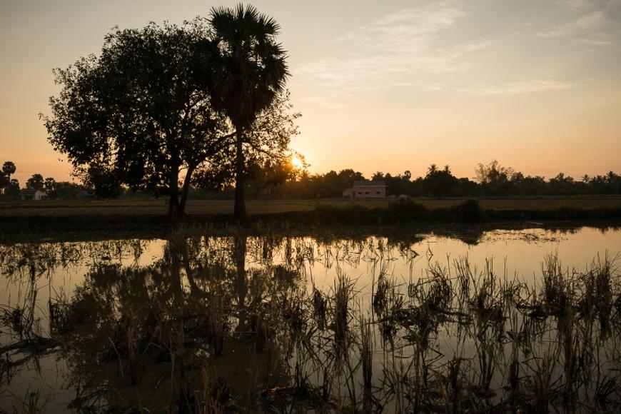 Fields near, Kampot, Cambodia, Indochina, Asia