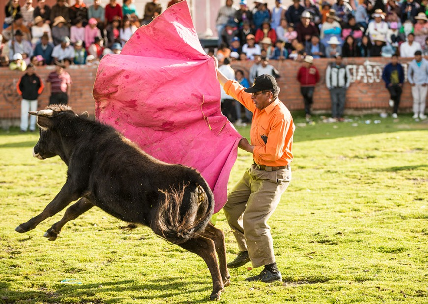 Bullfights at the culmination of 'Fiesta de la Virgen de la Candelaria', Copacabana, Lake Titicaca, Bolivia