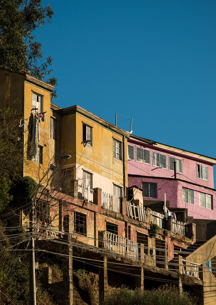Cerro Cordillera, Valparaíso, Central Coast, Chile