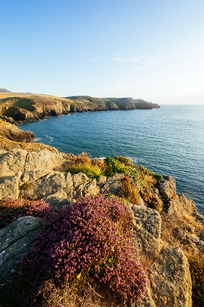 Strumble Head, Pembrokeshire Coast National Park, Wales, UK