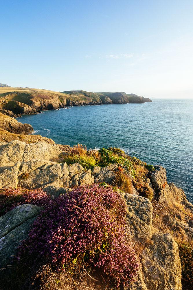 Strumble Head, Pembrokeshire Coast National Park, Wales, UK