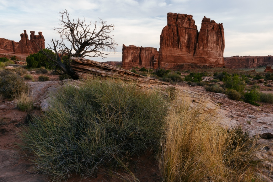 View of Courthouse Towers, The Organ and Three Gossips at dawn, Arches National Park, Utah, USA