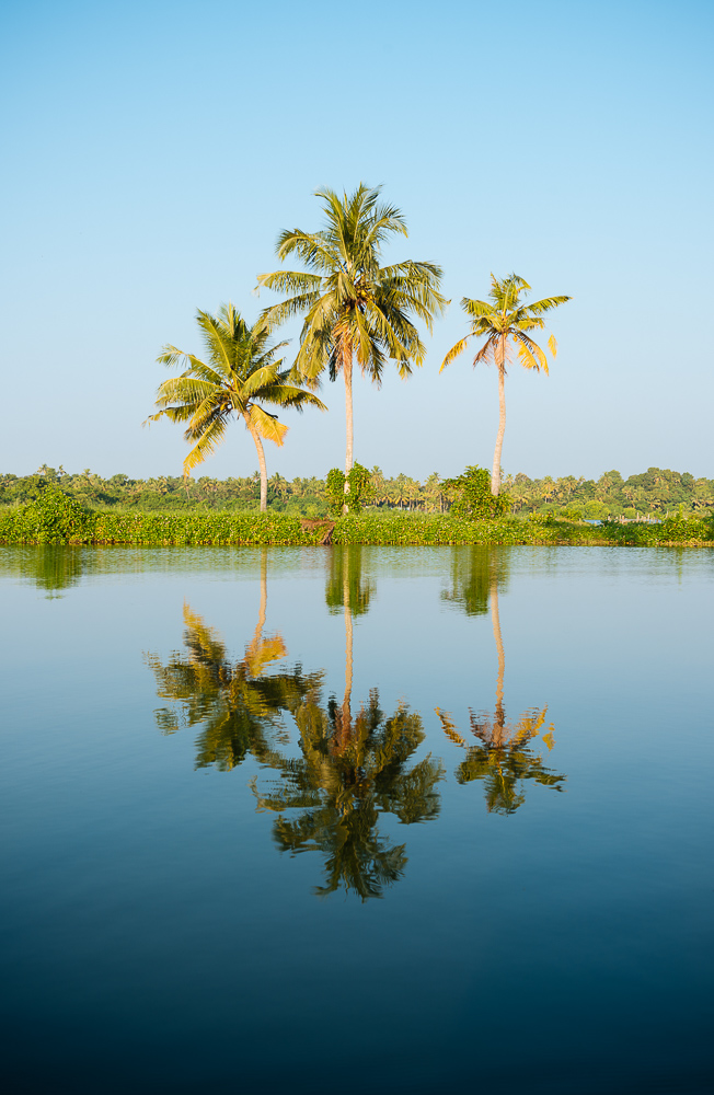 Backwaters near North Paravoor, Kerala, India