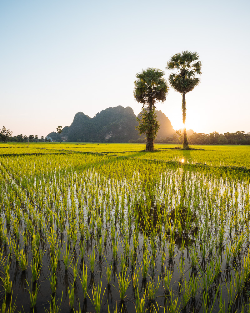 View of Paddy Fields and Karst Hills at dusk, Hpa-an, Kayin State. Myanmar, Asia