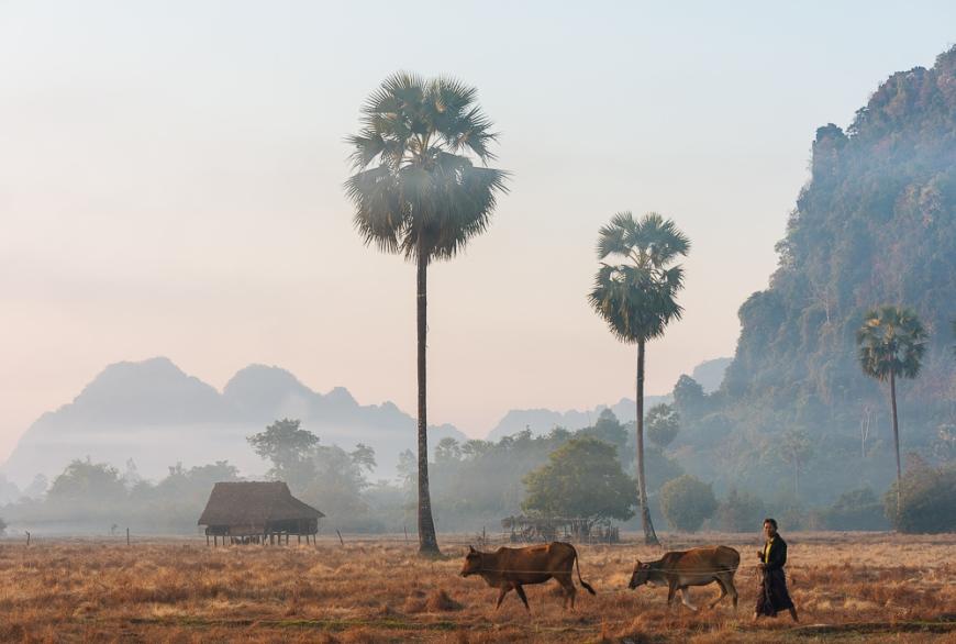 Landscape near Hpa-an at dawn, Kayin State. Myanmar, Asia