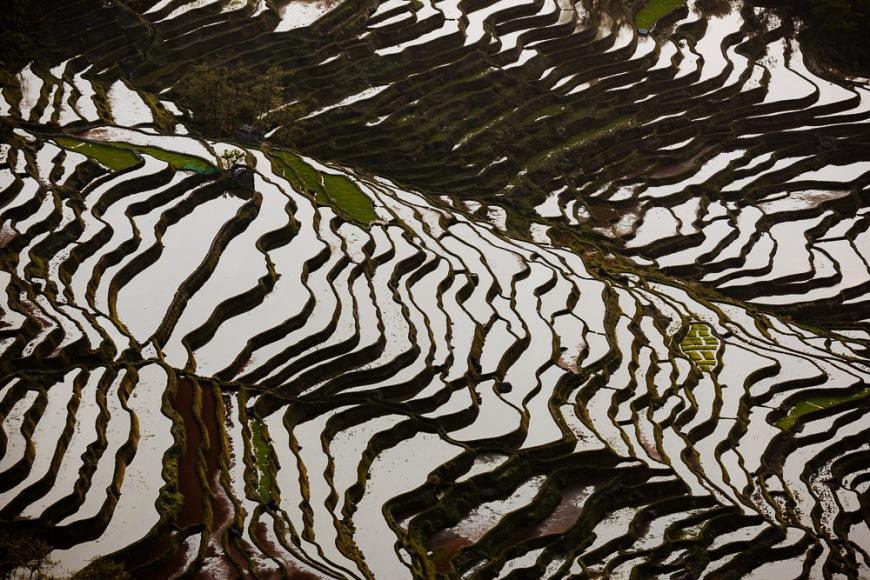 Rice Terraces at Bada, Yuanyang, Yunnan Province, China