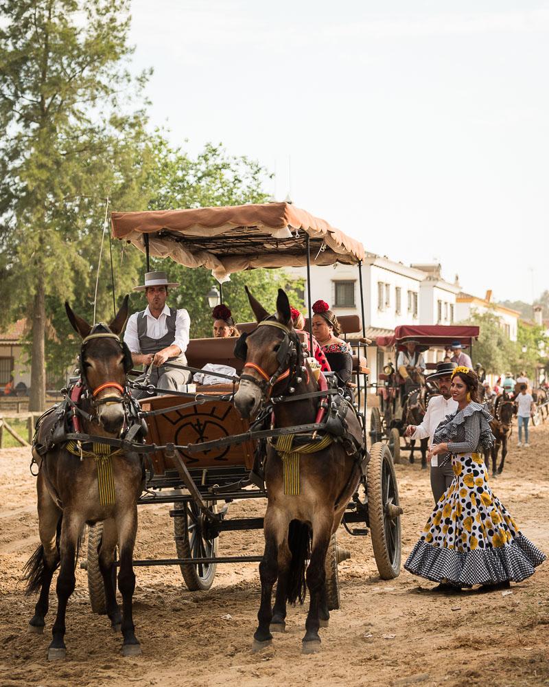 Pilgrimage of El Rocio, Huelva district, Andalucia, Spain