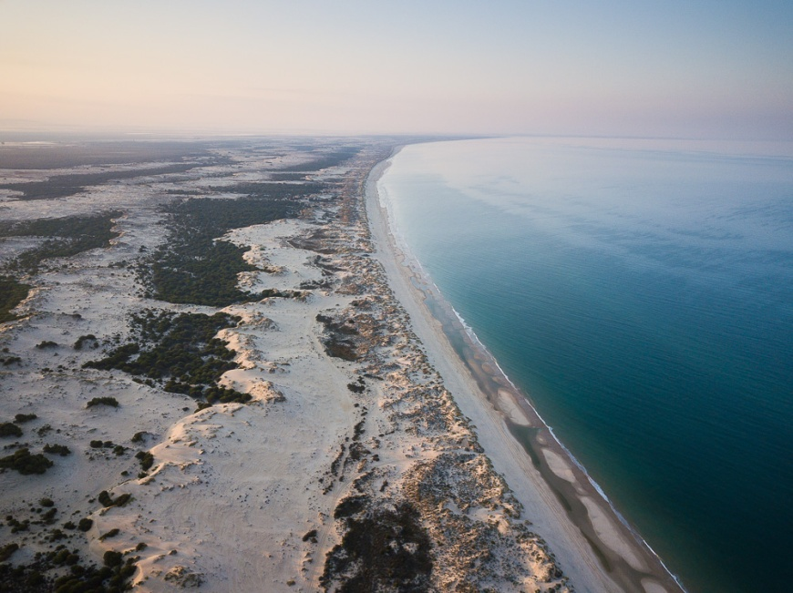 Aerial view of Doñana National Park at dawn, Matalascanas, Huelva District, Andalucia, Spain