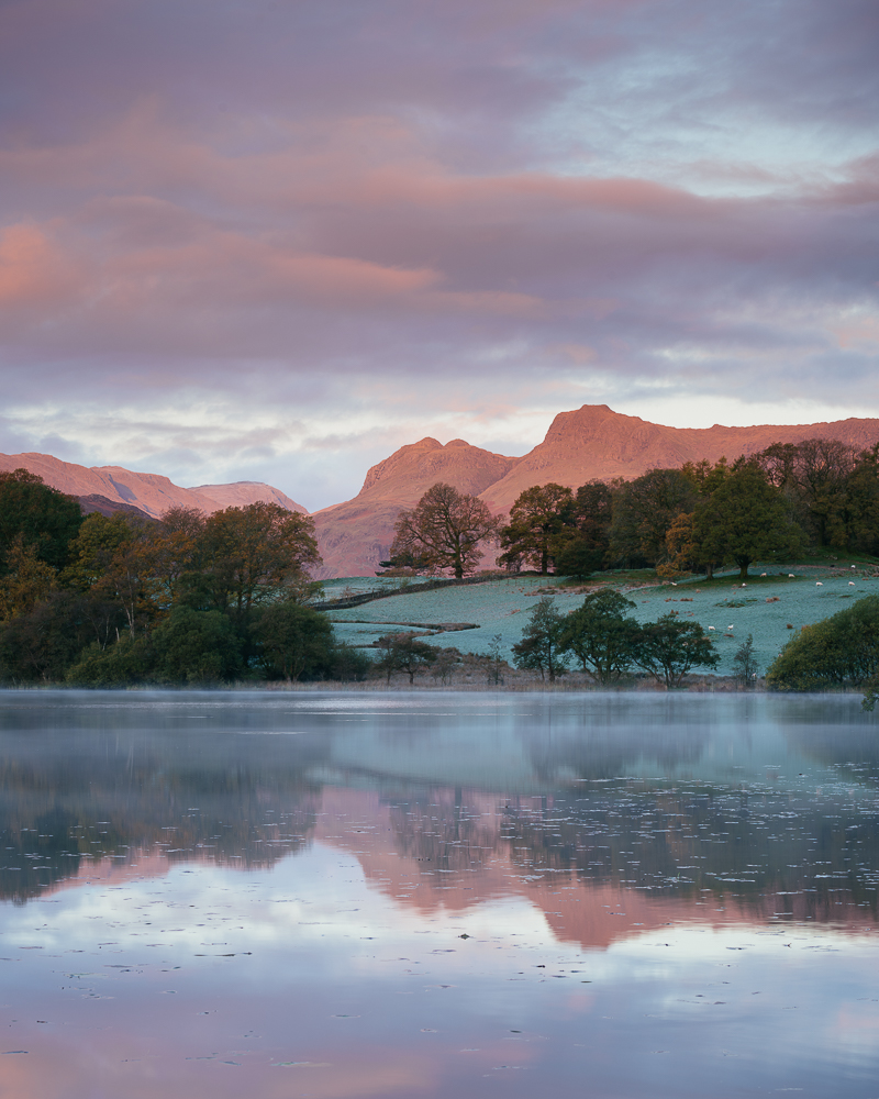 Langdale Pikes at dawn from Loughrigg Tarn, Lake District, Cumbria, England, United Kingdom