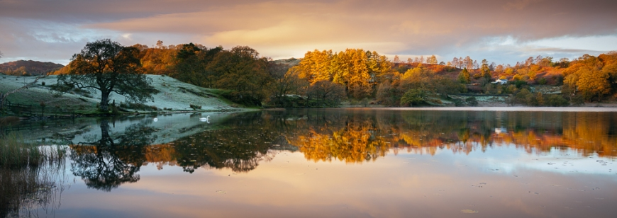 Dawn light at Loughrigg Tarn, Lake District, Cumbria, England, United Kingdom