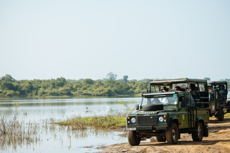 Jeep safari parked by lake, Uda Walawe National Park, Uva Province, Sri Lanka, Asia