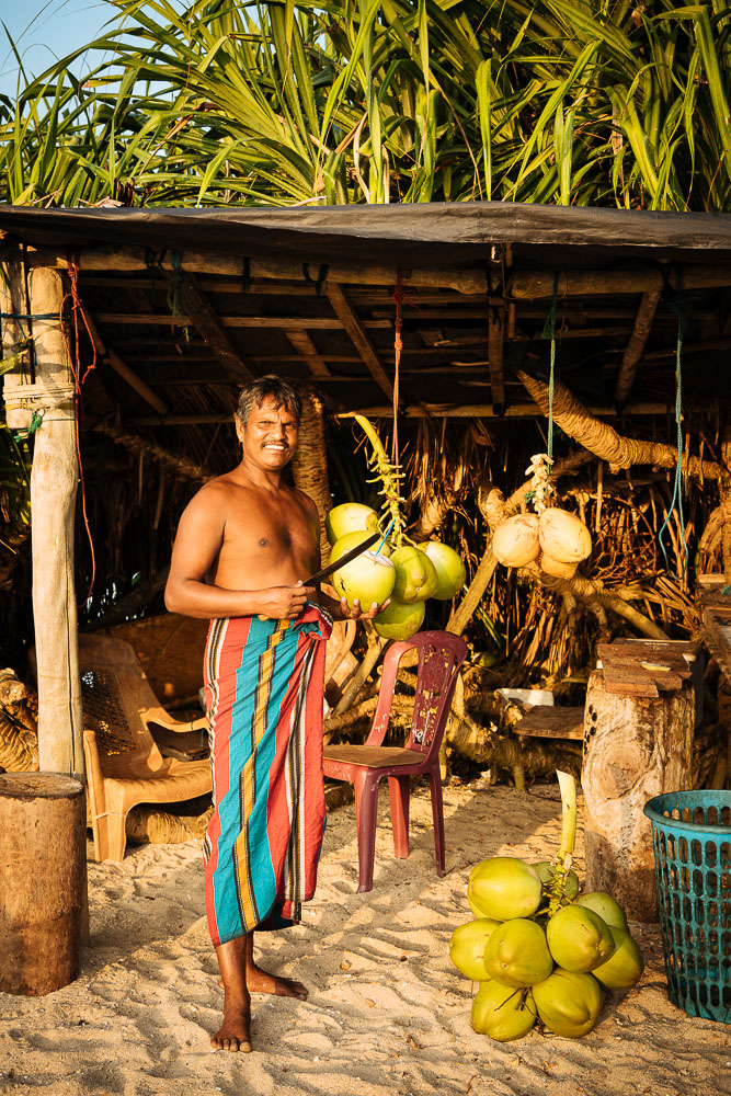 Fresh coconut stall, Weligama, South Coast, Sri Lanka, Asia