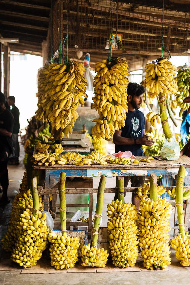 Banana Stall, Jaffna Market, Jaffna, Northern Province, Sri Lanka, Asia