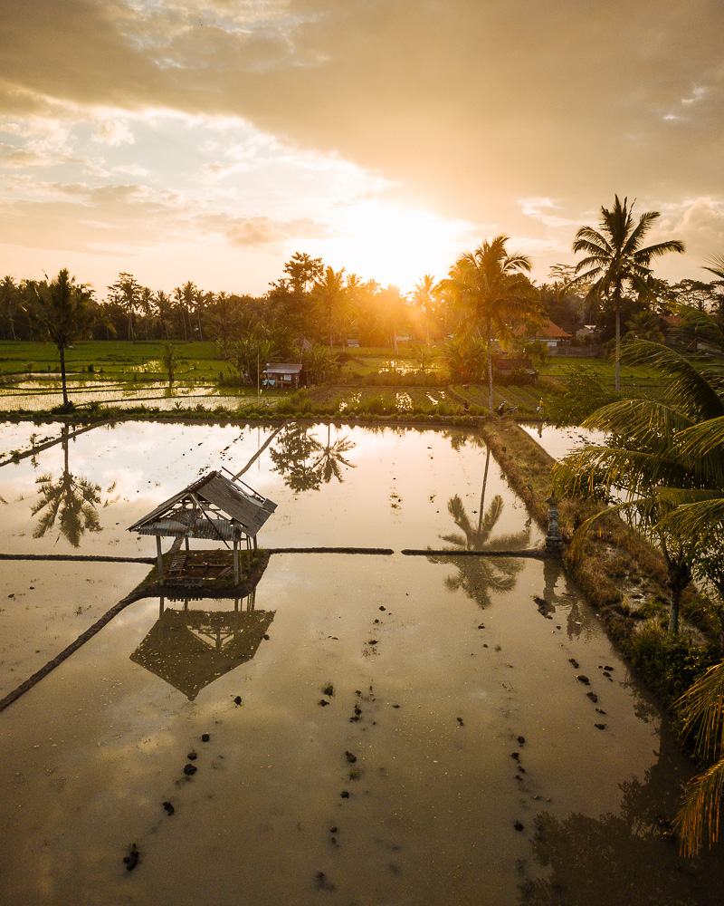 Aerial View of Sunset over Rice Fields near Sidemen, Bali, Indonesia